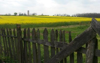 Identifikácia a uznávanie prierezových kompetencií v rozvoji vidieka