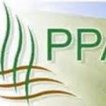 Aktuálna výzva PPA